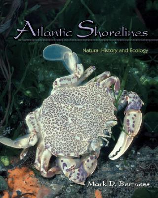 Atlantic Shorelines By Bertness, Mark D.